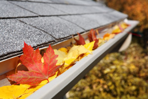 gutter cleaning northeast ohio